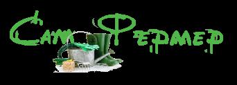 Блог о садоводстве и фермерстве