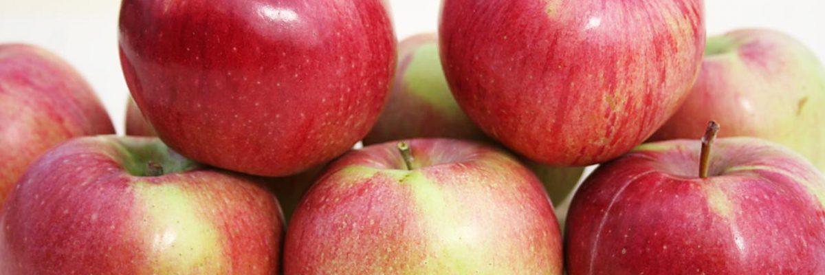 анис белый яблоки