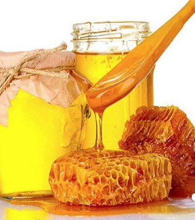 мед лечебные свойства